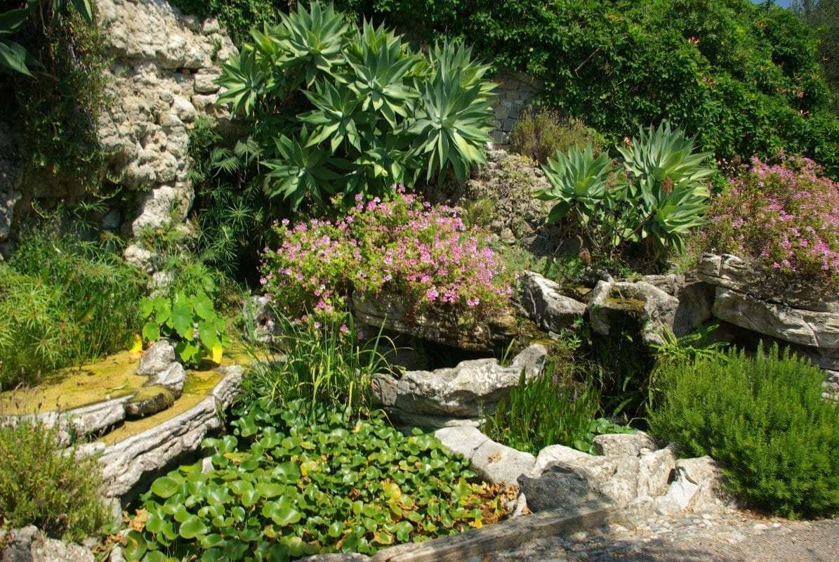 giardino-roccioso