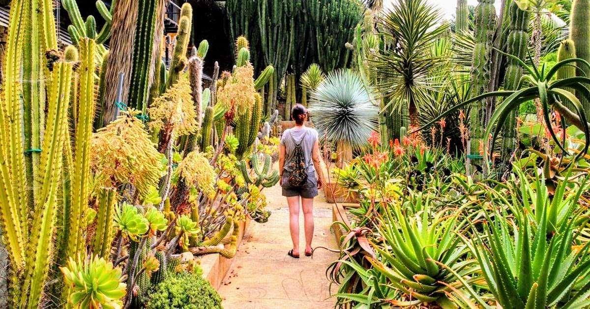 giardino-esotico-pallanca-fb